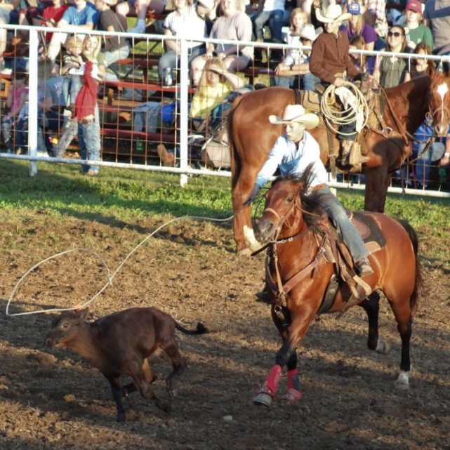 Photo by Shari Harris Jasper McCloy in Breakaway Roping had a time of 3.5 seconds Friday night.