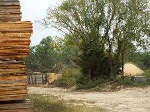 15) Sawdust Lumber CP4683