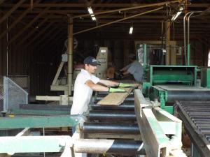 9) Sawmill CP5380
